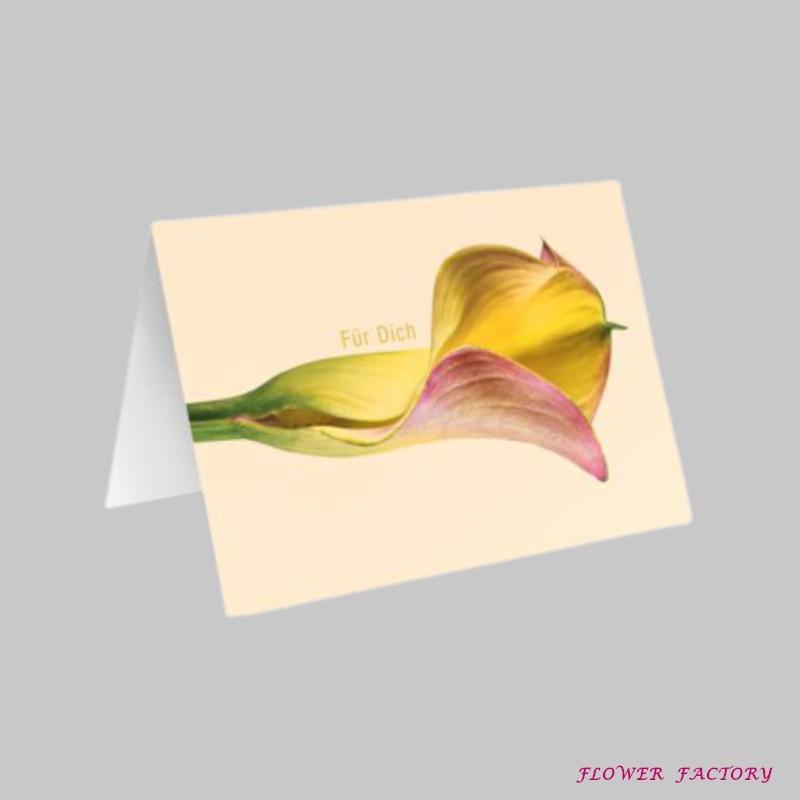 Flamingoblume oder botanisch Anthurie