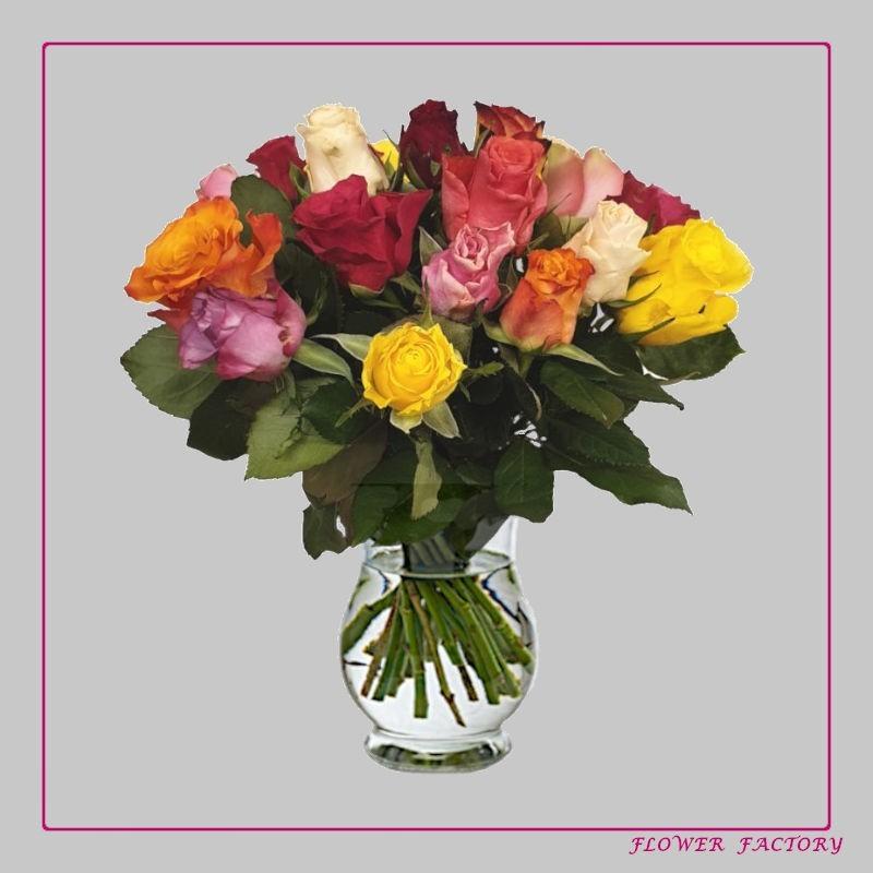 Yellow poppy seeds