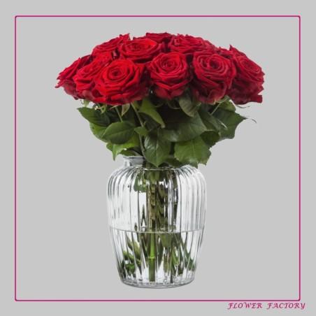 Natur-Endecker T-Shirts