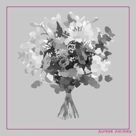Nature Explorer Ketchup