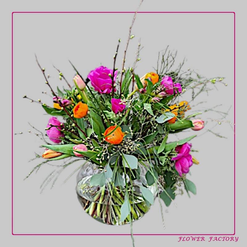 Nature Explorer Spaghetti